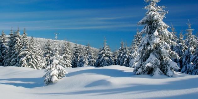 winteryblogpic-630x315